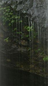 rain.jpg (168x300, 8Kb)