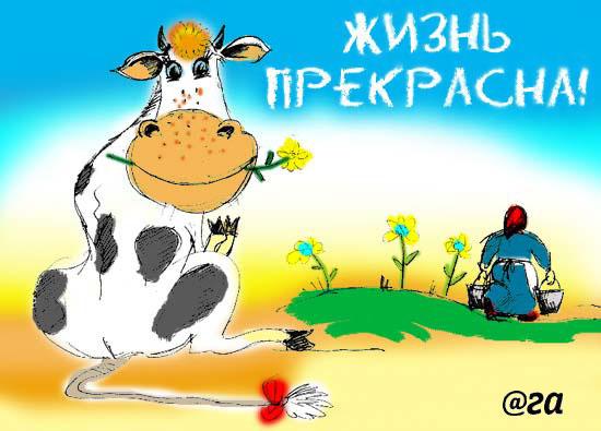 http://img.liveinternet.ru/images/attach/3/7179/7179573_4078402_VH0003.jpg