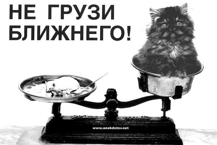 http://img.liveinternet.ru/images/attach/3/7225/7225385_4997908_negruzi.jpg