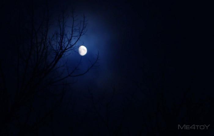 луна.jpg (700x446, 36Kb)