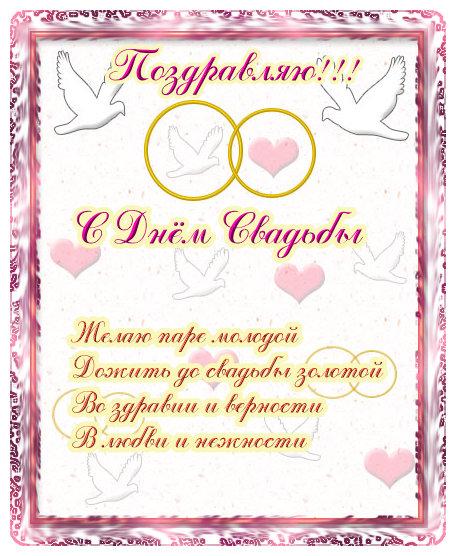 Поздравление племяннице со свадьбой в стихах красивые 46