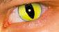Eyes_Cateye (85x47, 11Kb)