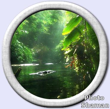 5576255_Amazonkaж (370x366, 30Kb)