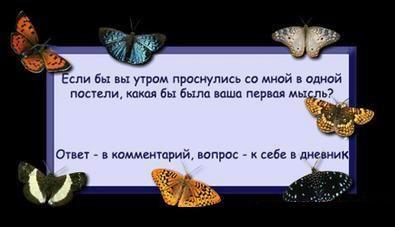 ком (395x227, 14Kb)