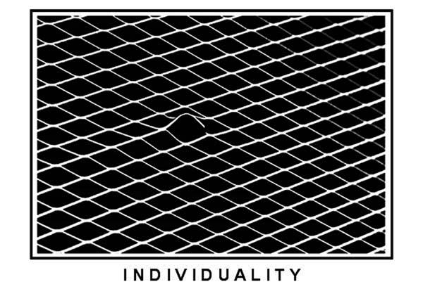871318_Individuality (600x411, 78Kb)