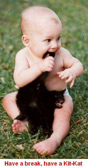 babyeatingcat1 (292x556, 25Kb)