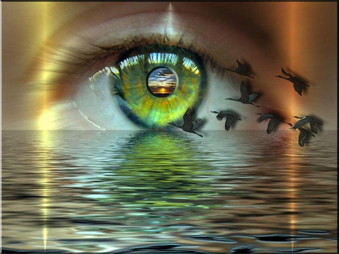 http://img.liveinternet.ru/images/attach/4/11499/11499111_1465450.jpg