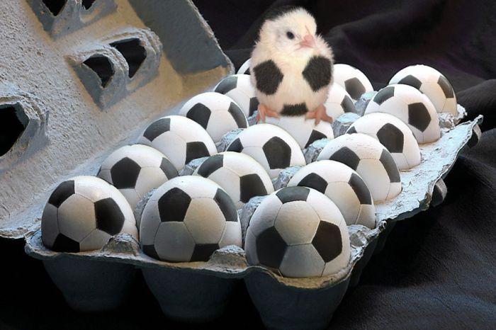 чемпионат норвегии по футболу г