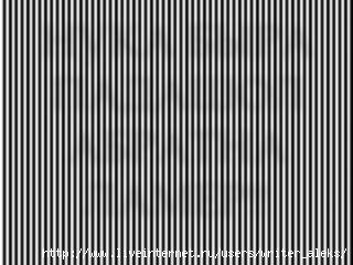 (320x240, 56Kb)