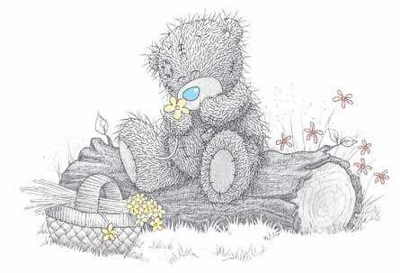 """Сказка """"Почему у мишки Teddy синий нос?"""""""