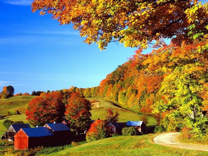 Woodstock in Autumn, Vermont (700x525, 390Kb)